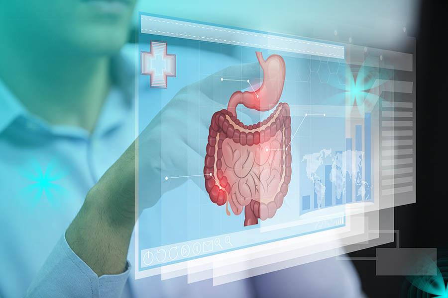 Gastroenterology system